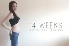 14 Weeks Pregnancy