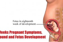 18 Weeks Pregnant Symptoms, Ultrasound and Fetus Development